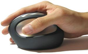 MS Natural/Ergonomic Mouse